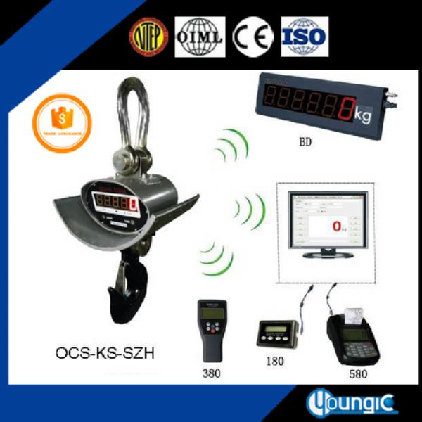 Crane weight weighing scale