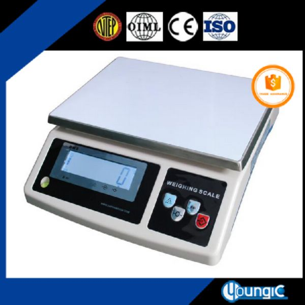 Digital Electronic Weighing Calibrate Scale