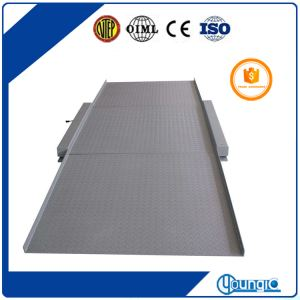 Electronic Used 5000lb Capacity Scale Floor Long Life For Sale