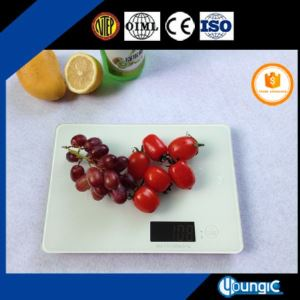 Bluetooth Weighing Scales for Food Measurement