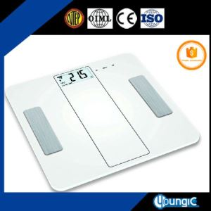 Electronic Bluetooth Weight Scale Machine for Shop Price