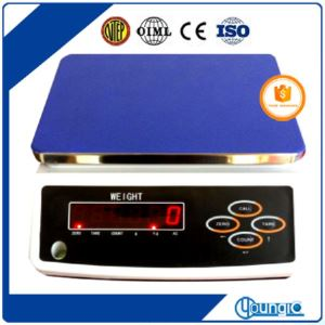 Bluetooth Intrinsically Safe Digital ACS Table Weighing Scales