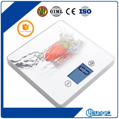 Plastic Wifi Digital Kitchen Weight Scale The Best Price