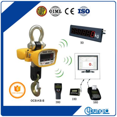 China Used 1000lb Digital Crane Weighing Scale For Sale